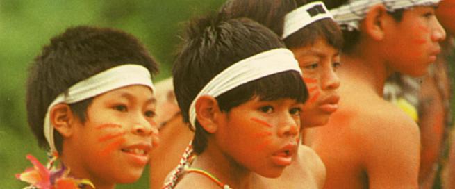 Memória Viva Guarani